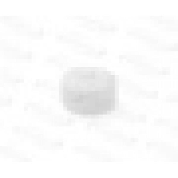 Заглушка Sanext PPR 32 Белая