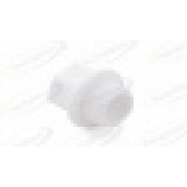 Заглушка Sanext PPR с резьбой 1/2 Белая